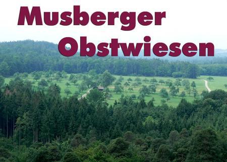 Musberg